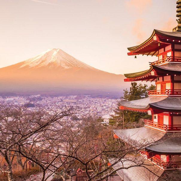 Tour to Japan