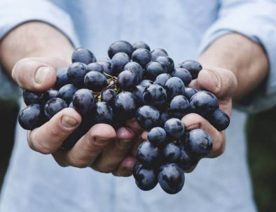 armenian wine grape